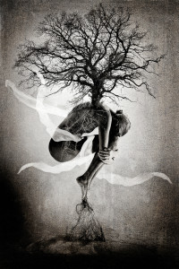Photo: Tree of Life by Erik Brede