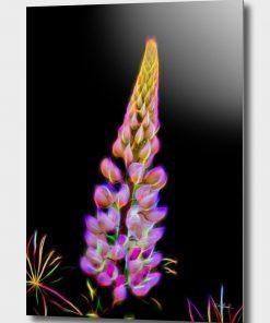 Erik Brede Photography - Color of Summer