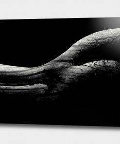 Body Shape Part 1 - Erik Brede
