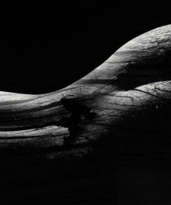 Body Shape Part 1 - Erik Brede