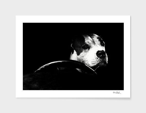 Erik Brede Photography - The Driver