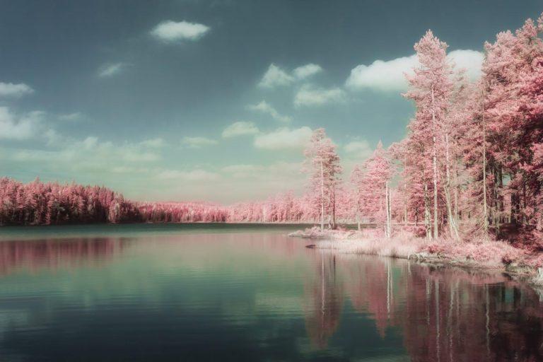 Erik Brede Photography - Autumn Lake Part 1
