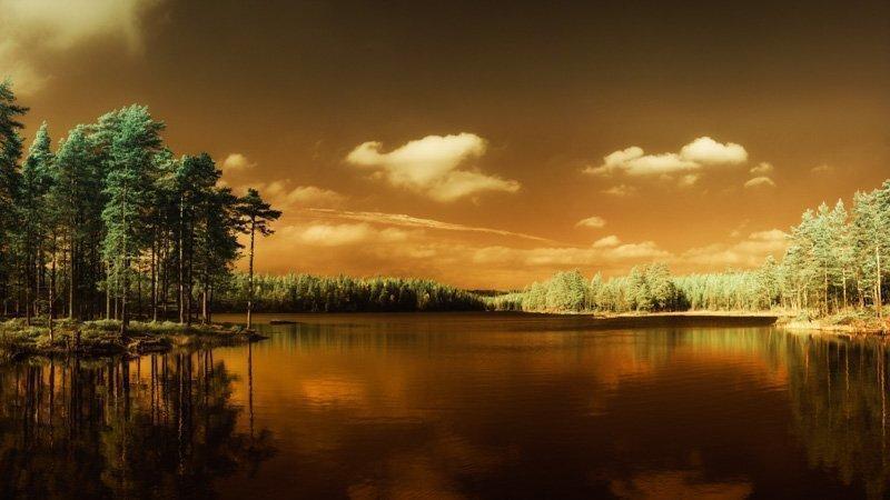 Erik Brede Photography - Autumn Lake Part 3