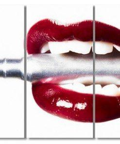 Erik Brede Photography - Bullet Lips Multi Triptych