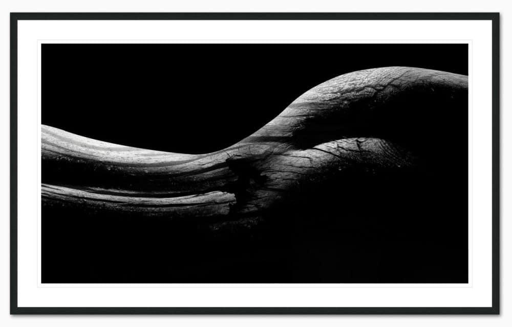 Body Shape Part 1 Framed - Erik Brede