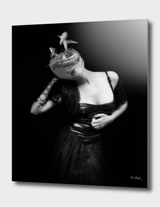 So Long, and Thanks for All the Fish - Erik Brede Photography
